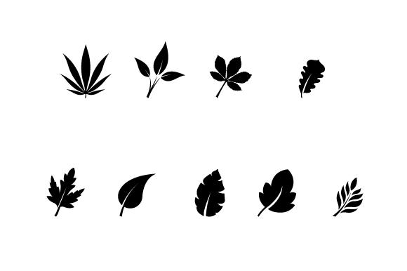 13-leaves-vector-big