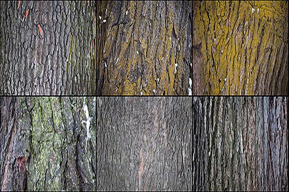 41-tree-bark-textures